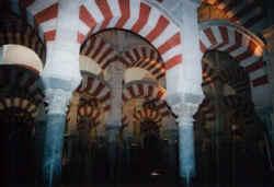 mezquita5.jpg (44981 Byte)